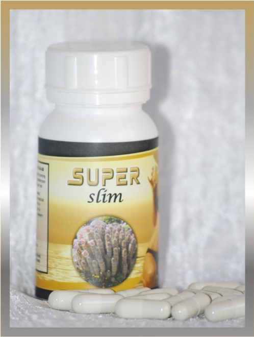 superslim hoodia